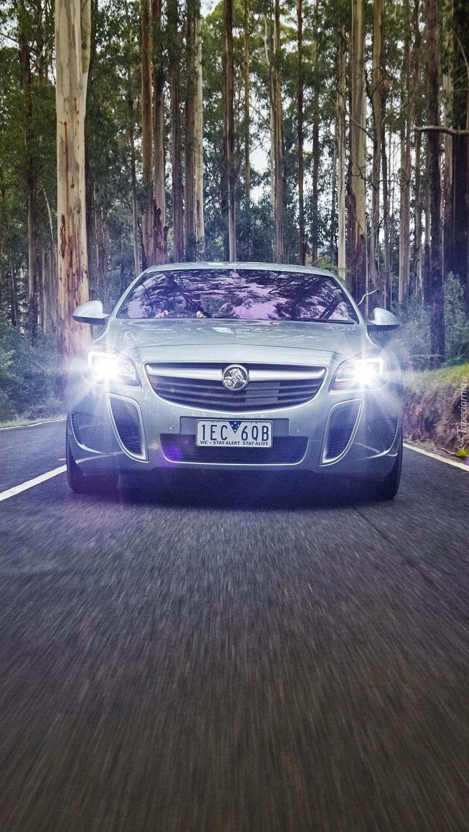 Opel Insignia Holden VXR na leśnej drodze