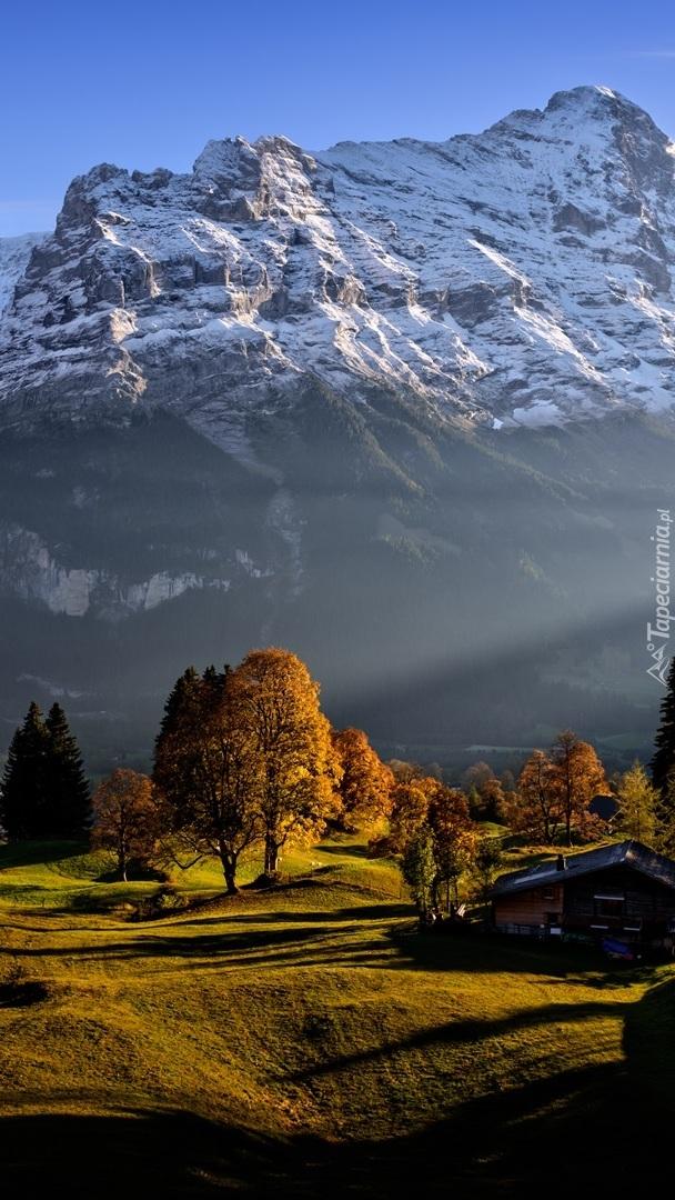 Ośnieżone Alpy Berneńskie