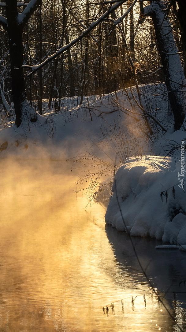 Ośnieżone brzegi rzeki w słonecznym blasku