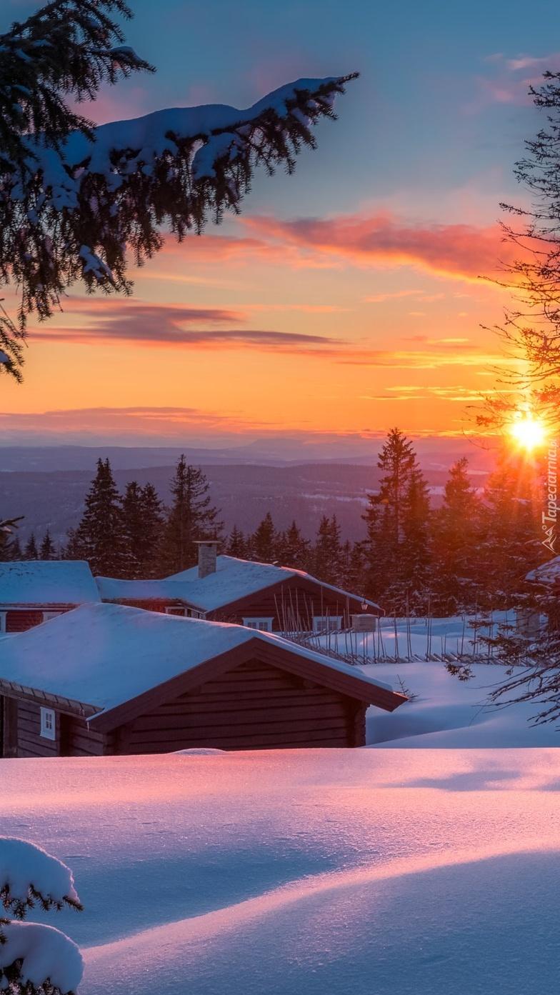 Ośnieżone domy i drzewa o zachodzie słońca