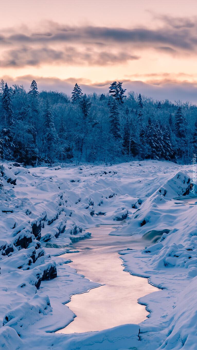 Ośnieżony las i rzeka