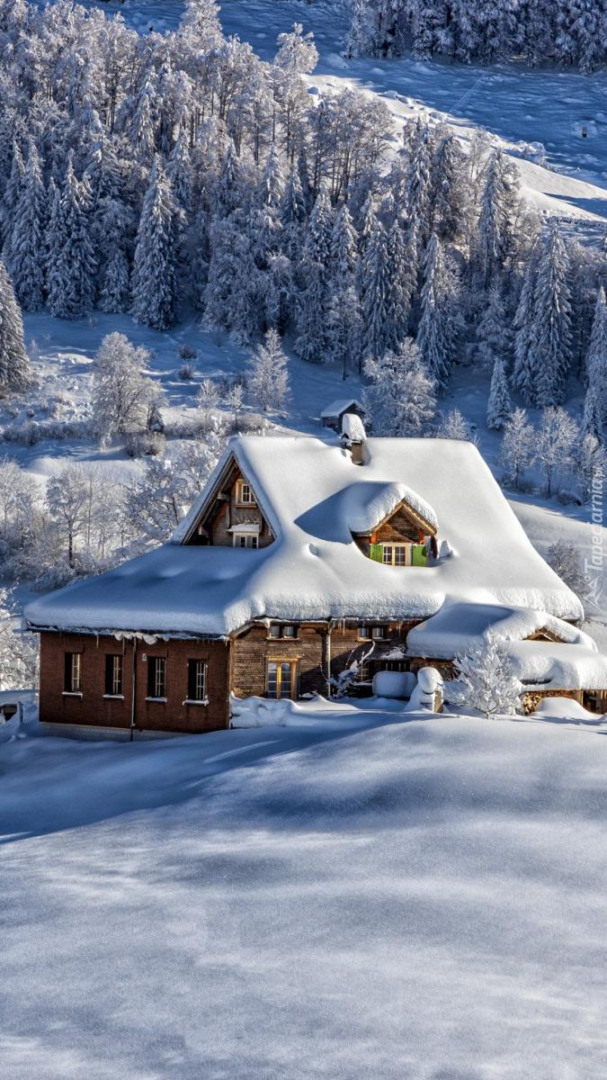 Ośnieżony śniegiem dom w górach