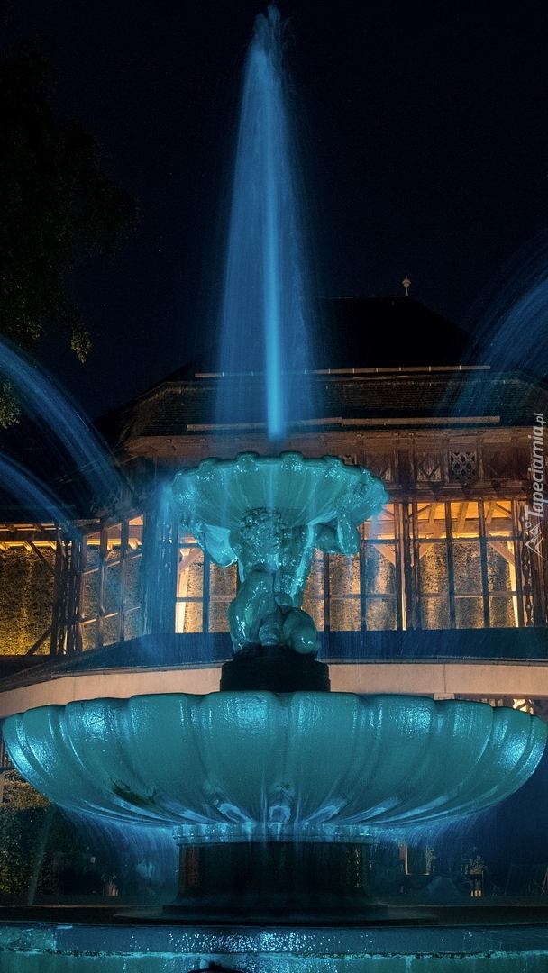 Oświetlona fontanna przed domem