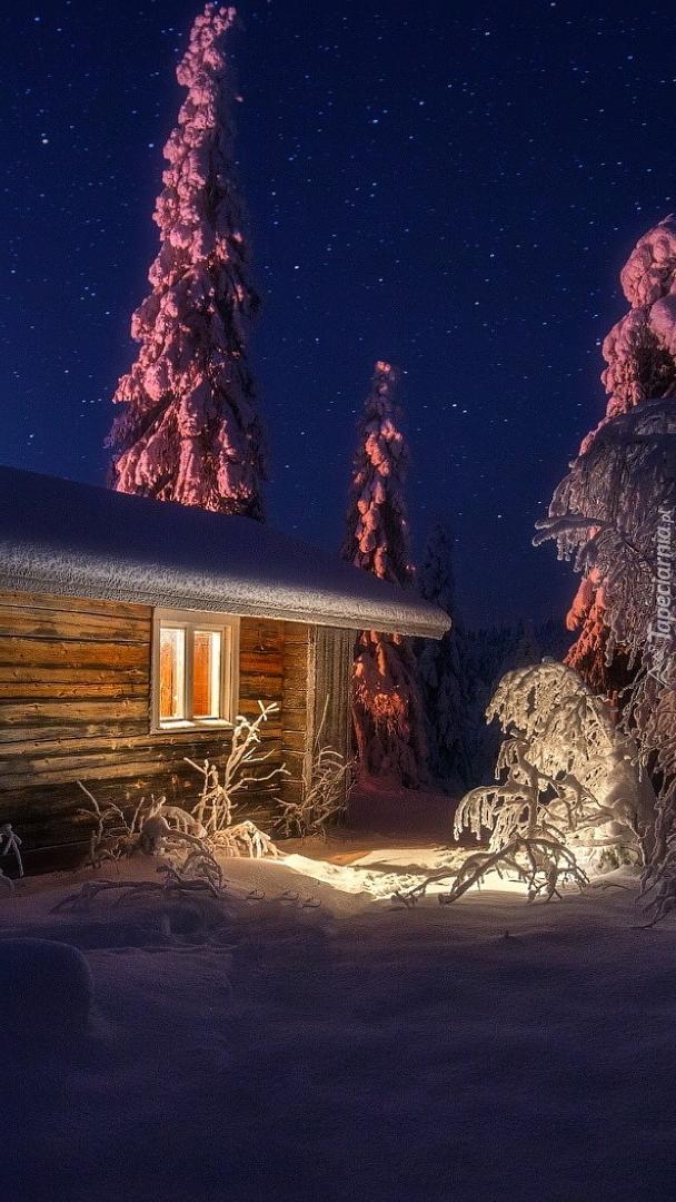 Oświetlony drewniany domek