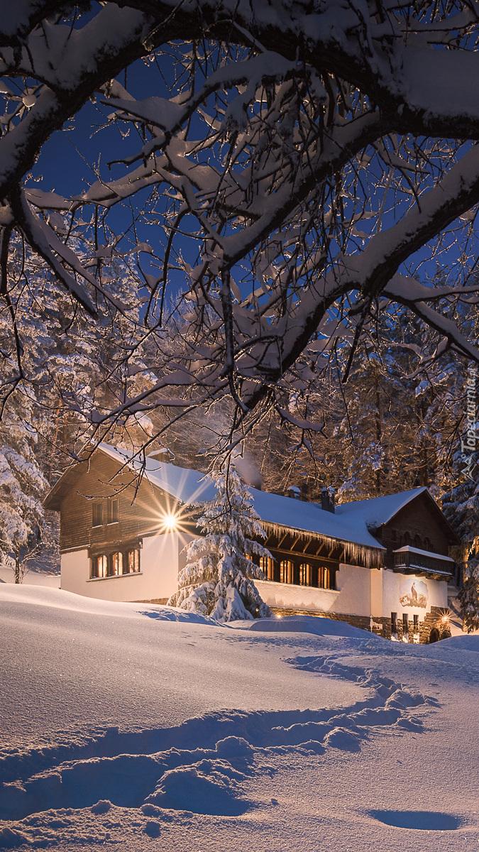 Oświetlony nocą dom w zimowej scenerii