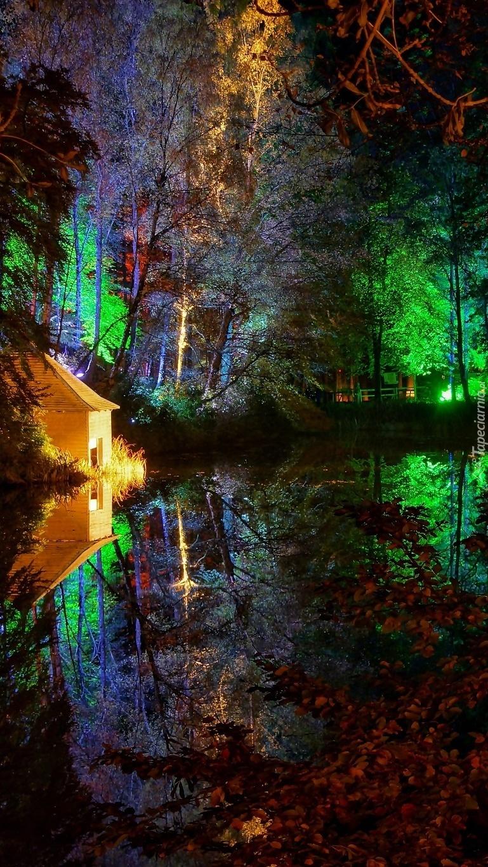 Oświetlony park nocą