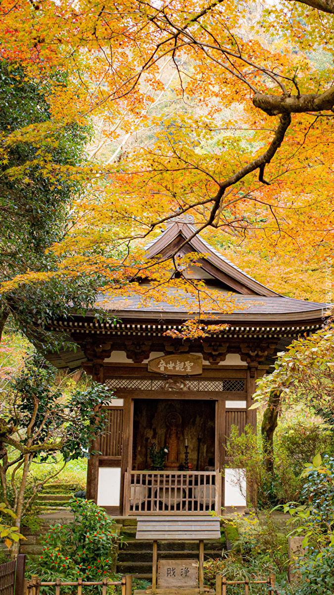 Pagoda wśród jesiennych drzew