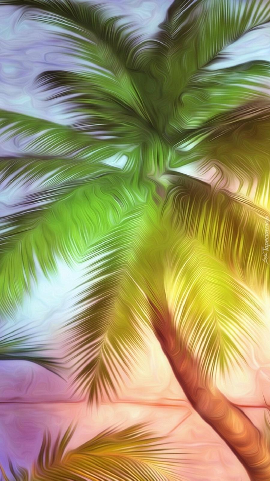 Palma w grafice