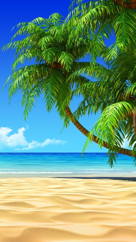 Palmy  nad  morską plażą