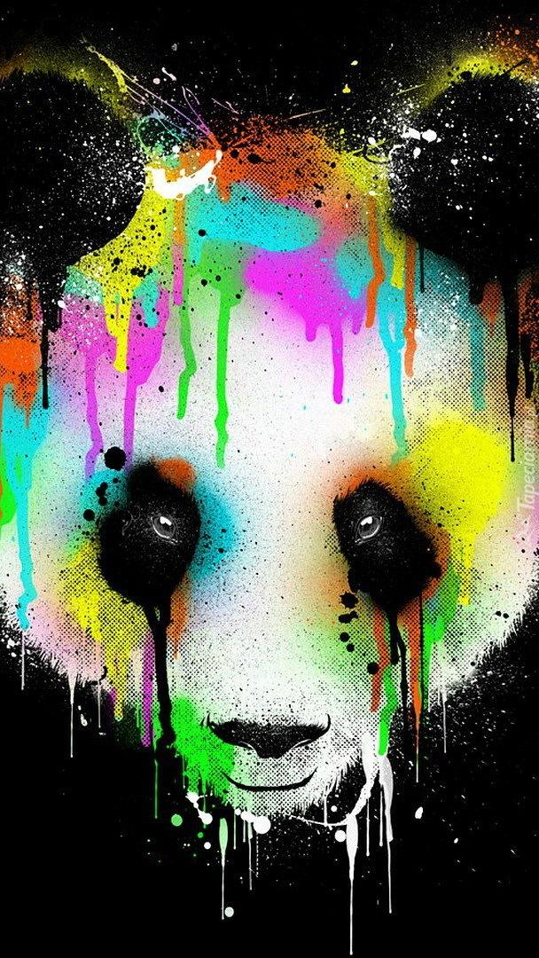 Panda w grafice