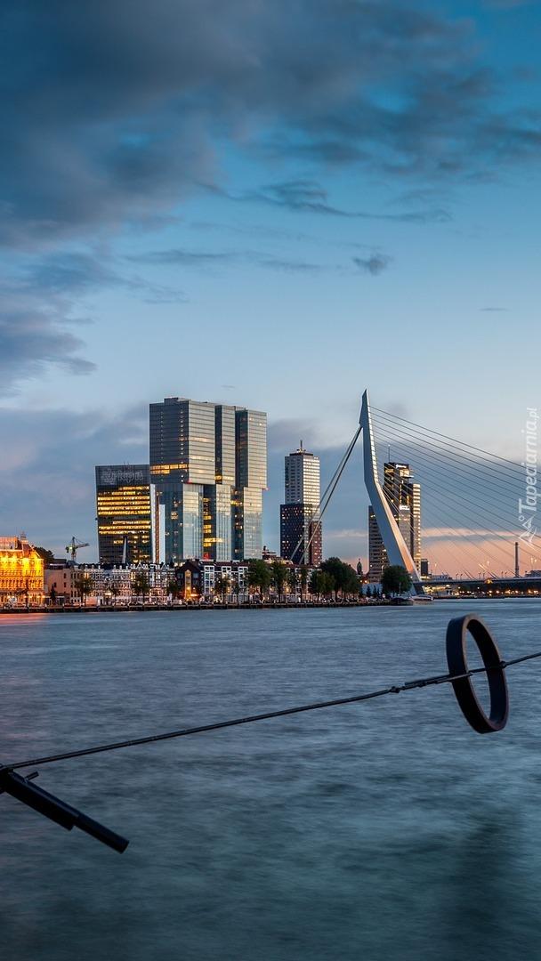 Panorama miasta  Rotterdam
