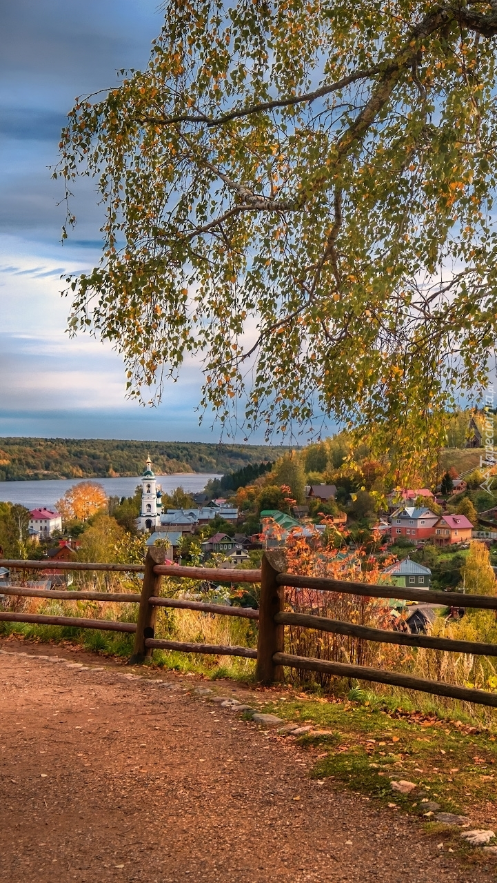 Panorama miejscowości Plyos