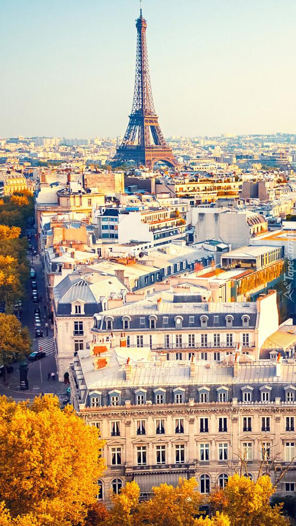 Panorama Paryża z wieżą Eiffla w tle