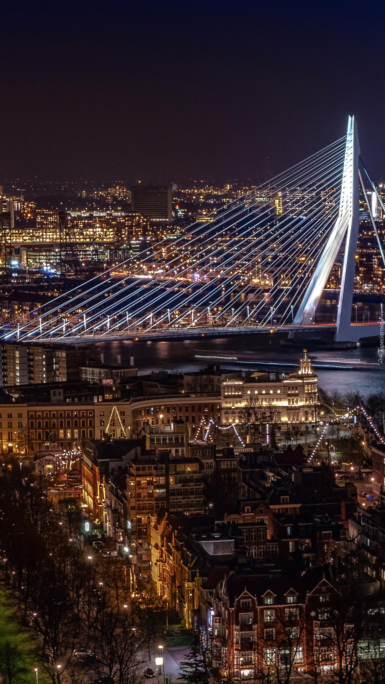 Panorama Rotterdamu nocą