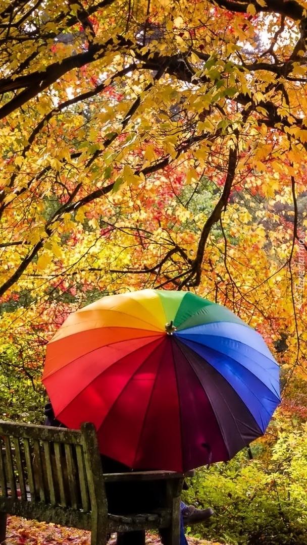 Para na ławce pod kolorową parasolką