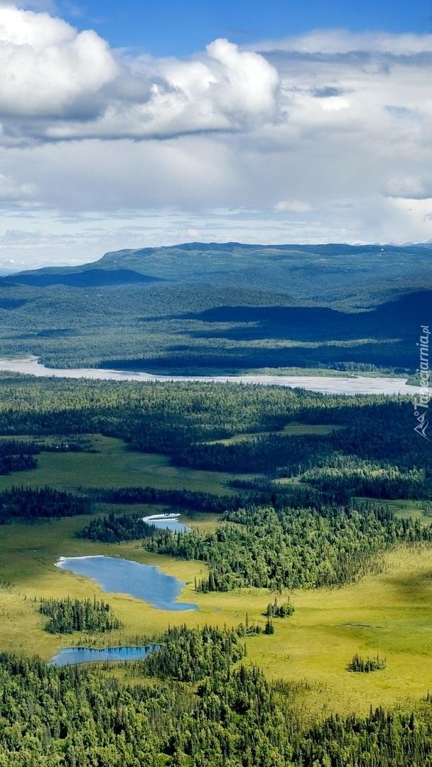 Park Narodowy Denali na Alasce