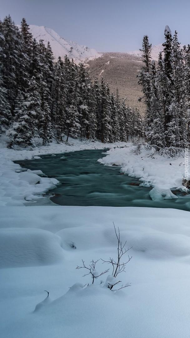 Park Narodowy Jasper zimową porą