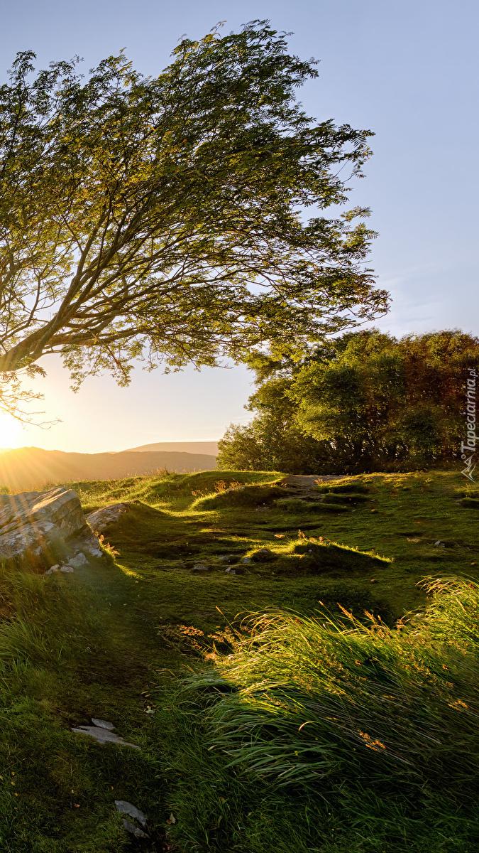 Park Narodowy Killarney w promieniach słońca