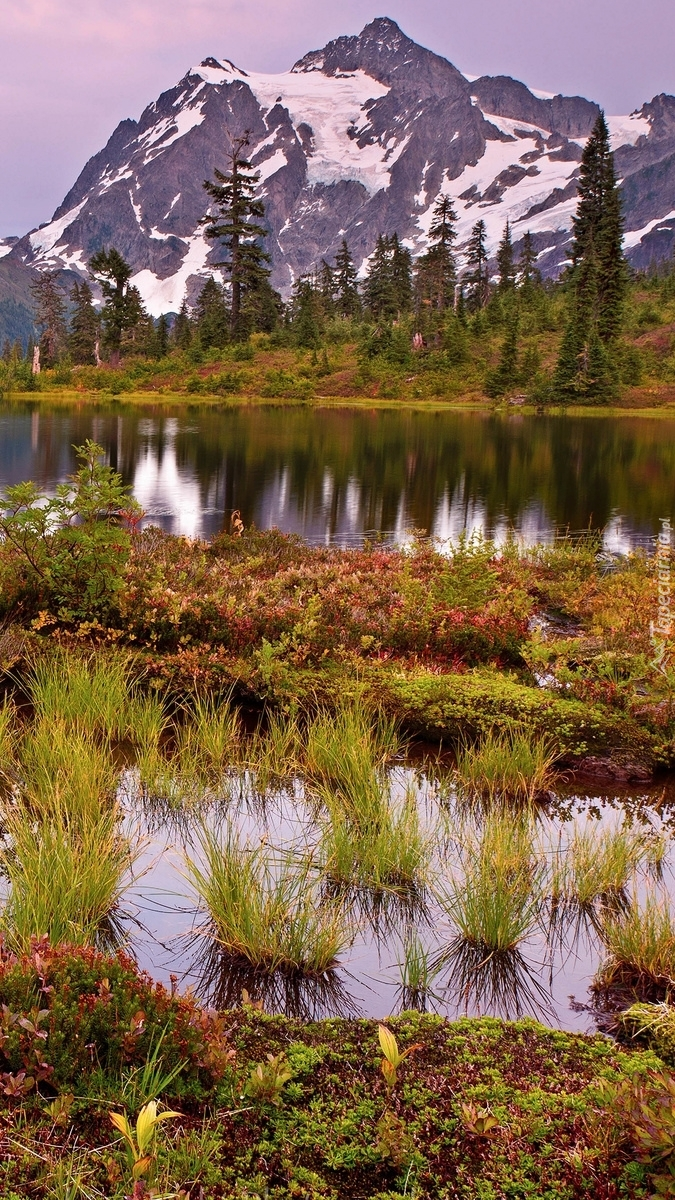 Park Narodowy Północnych Gór Kaskadowych
