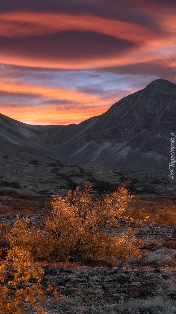 Park Narodowy Rondane