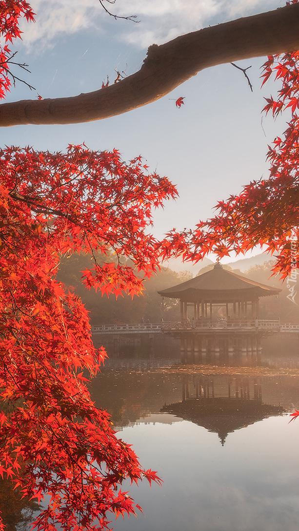 Pawilon Ukimido nad jesiennym stawem