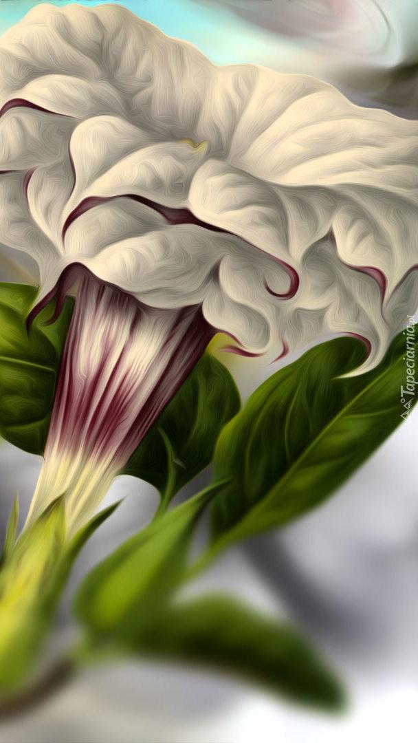 Petunia w grafice