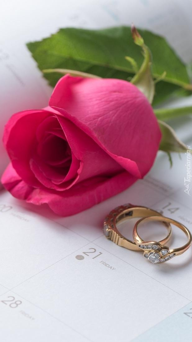 Pierścionki obok róży