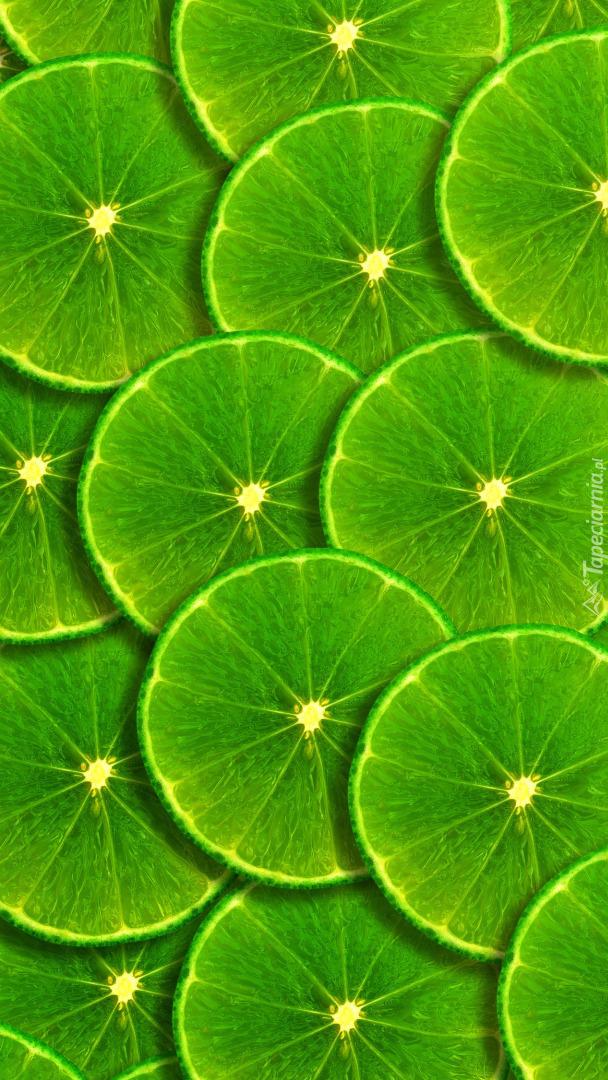 Plasterki limonki