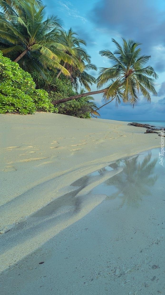 Plaża na wyspie Dhoores