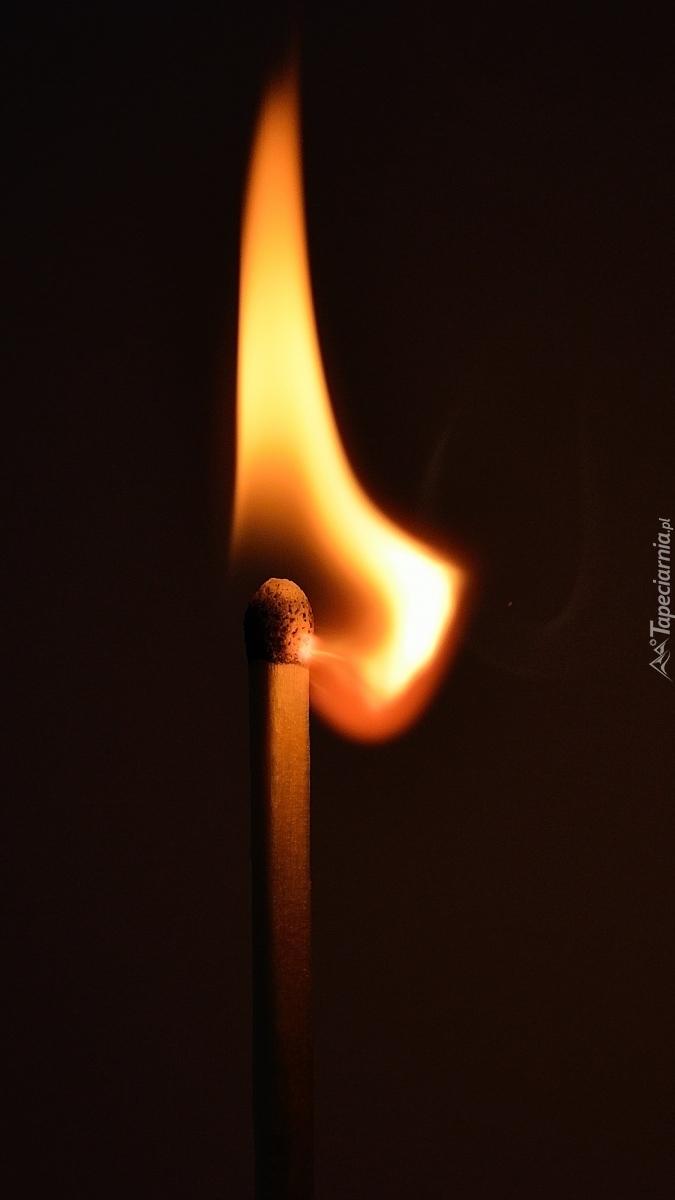 Płonąca zapałka