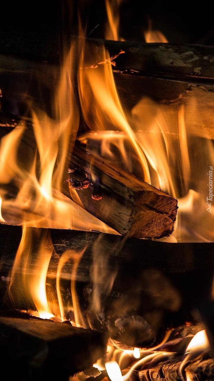 Płonie ognisko
