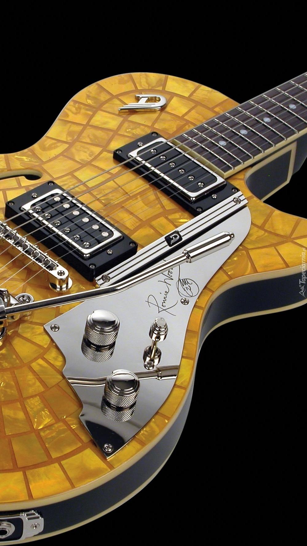 Podpisana gitara