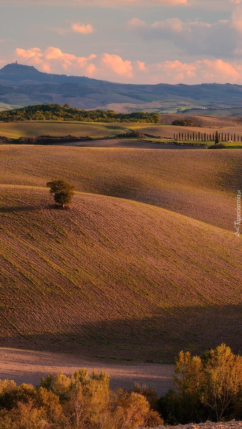 Pola i wzgórza