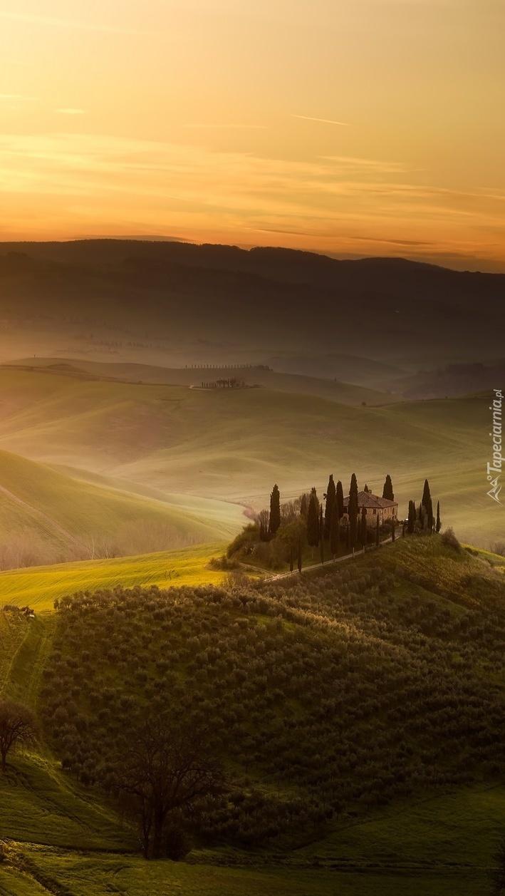 Pola Toskanii
