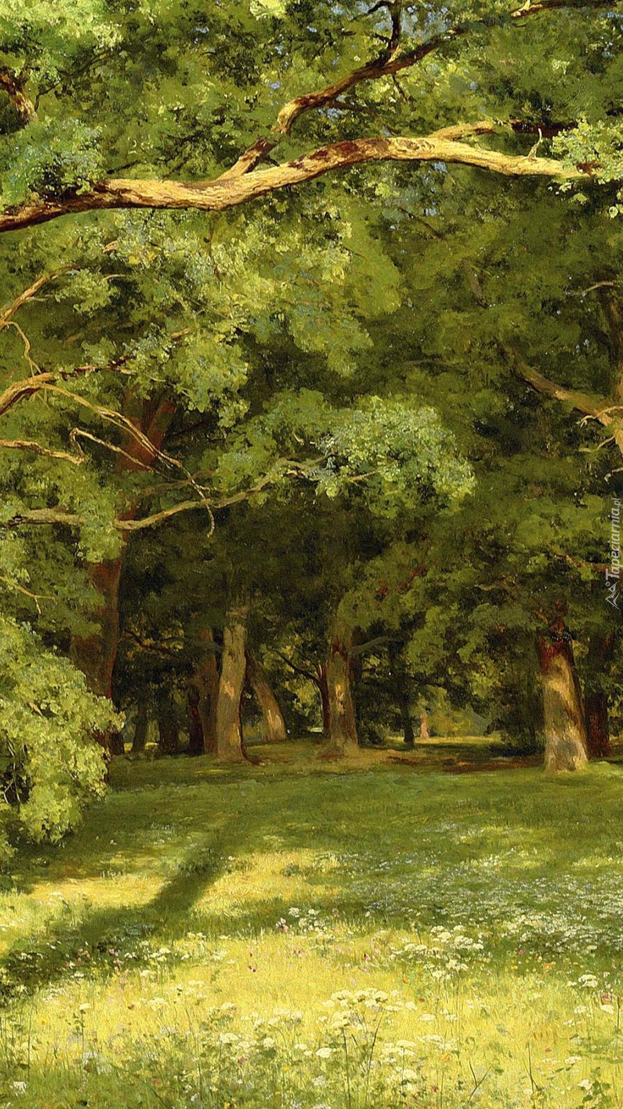 Polana w lesie na obrazie Iwana Szyszkina