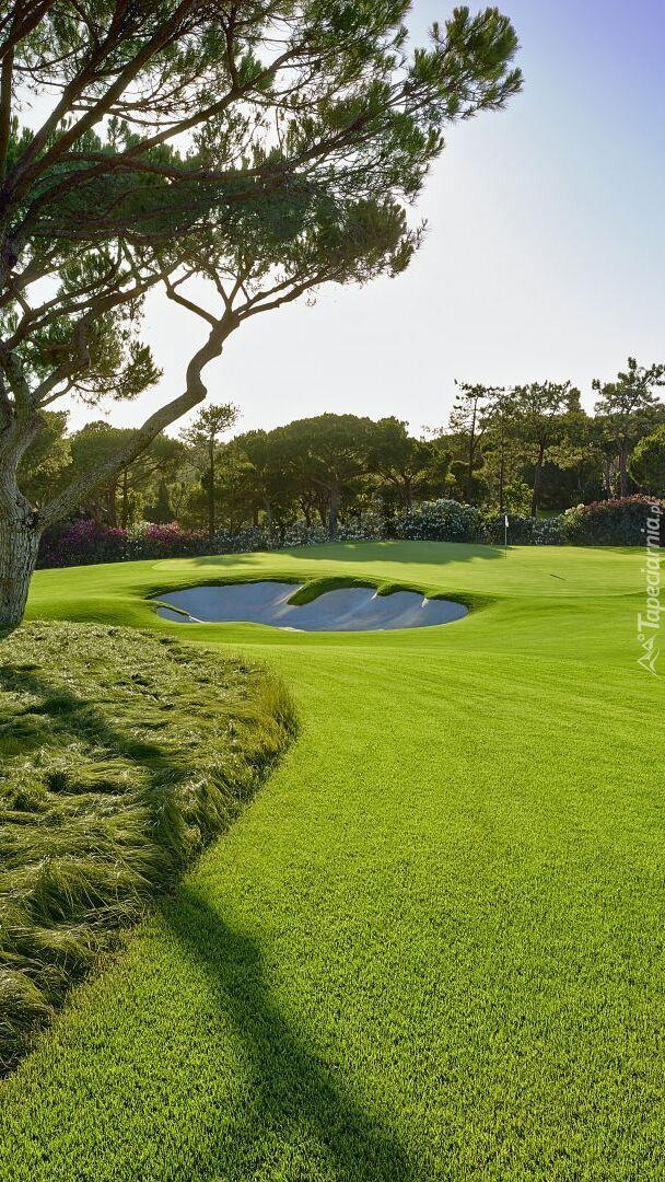 Pole golfowe w Almancil