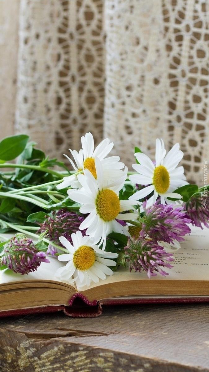 Polne kwiaty na książce
