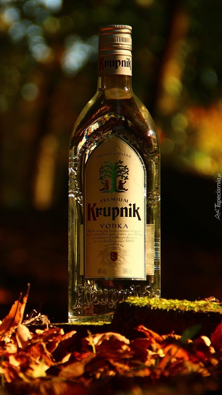 Polska wódka najlepsza