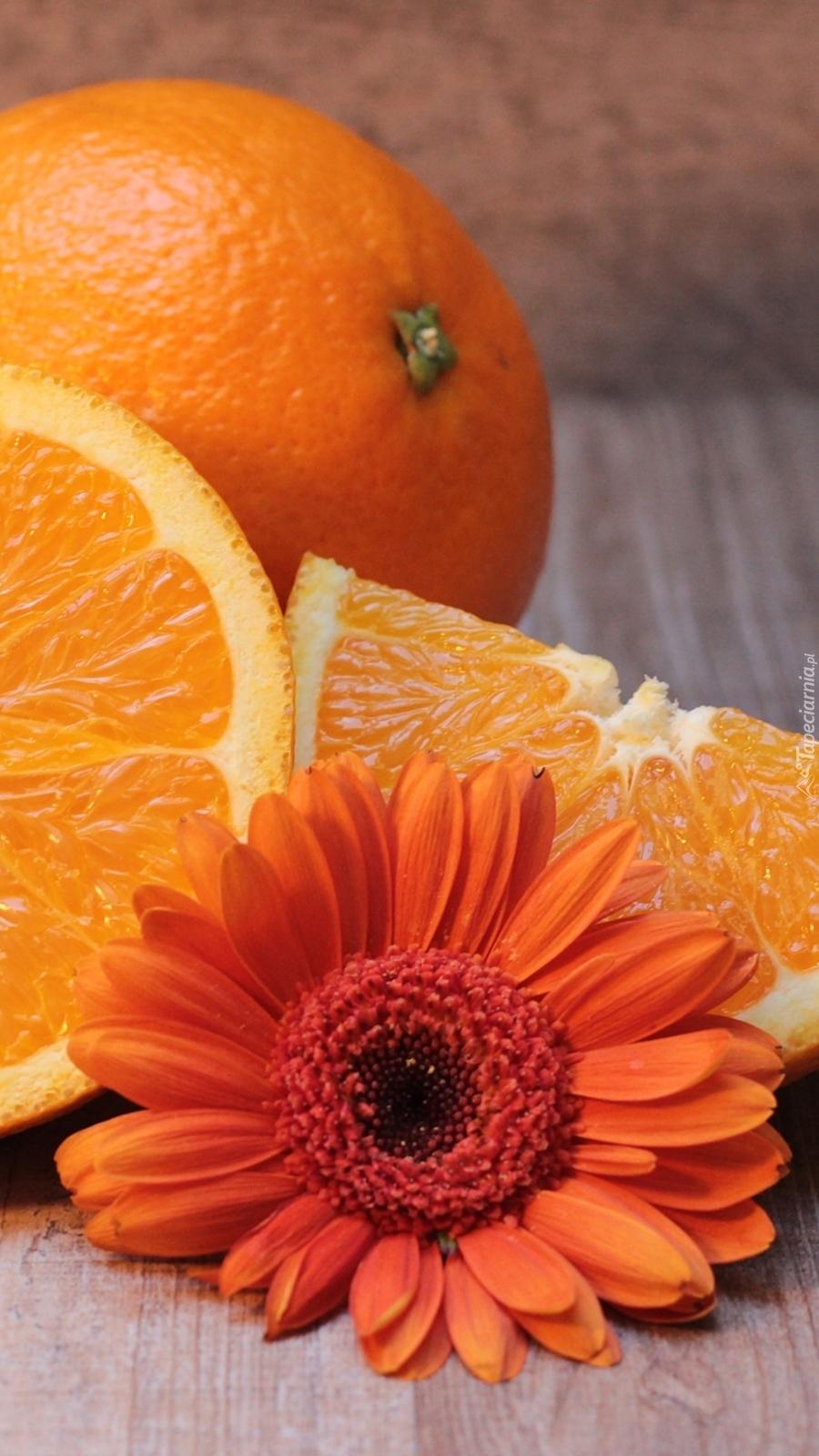 Pomarańcze z gerberą
