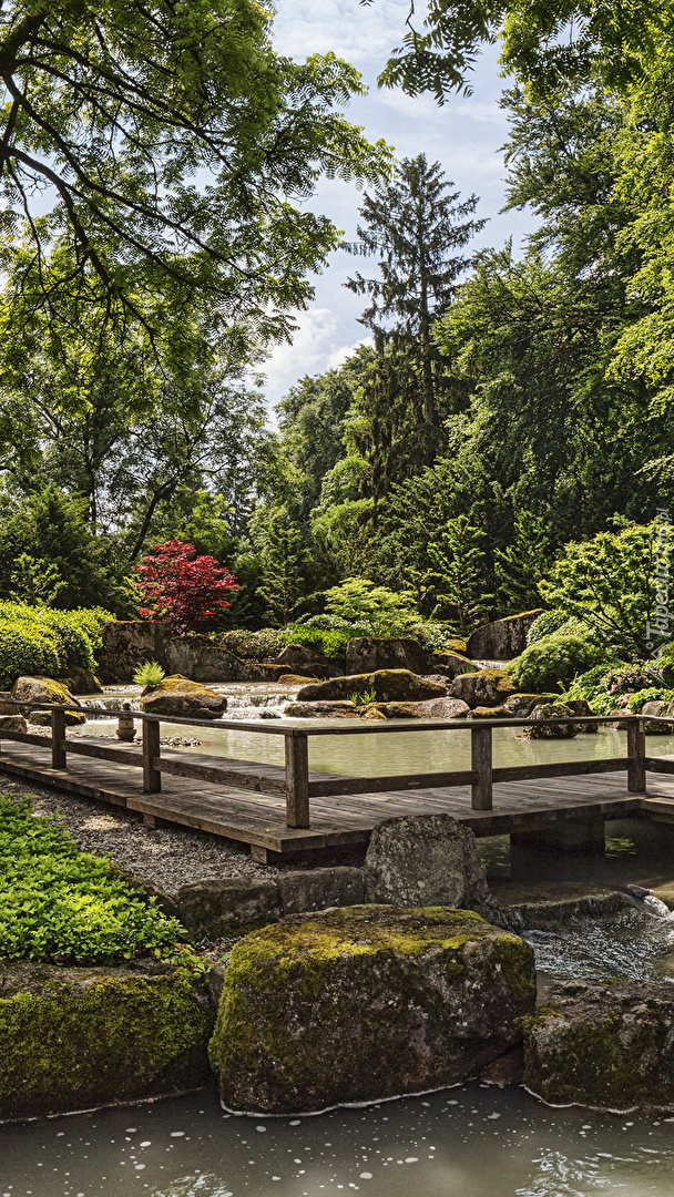 Pomost nad stawem w ogrodzie