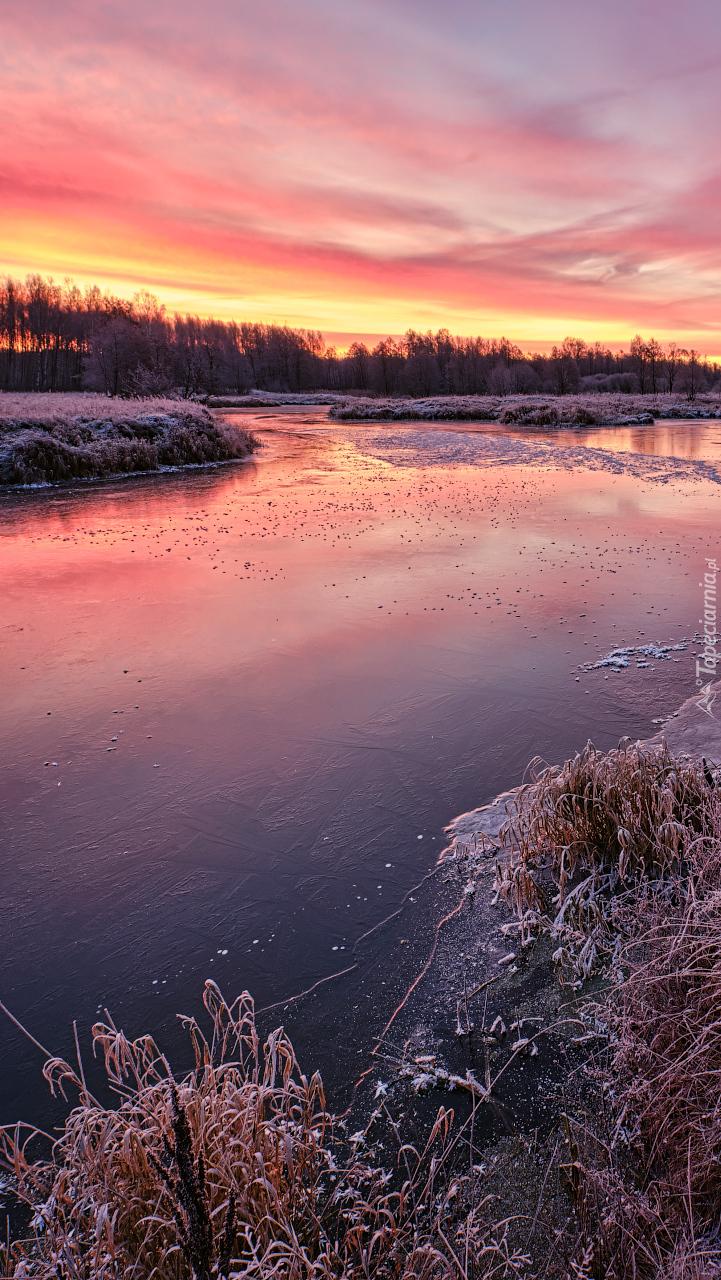 Poranek nad zamarzającą rzeką