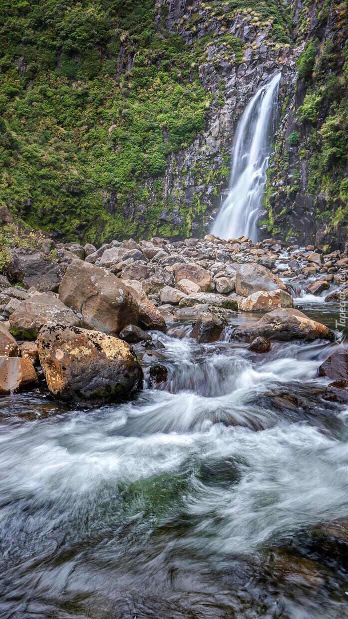Porośnięte skały przy wodospadzie