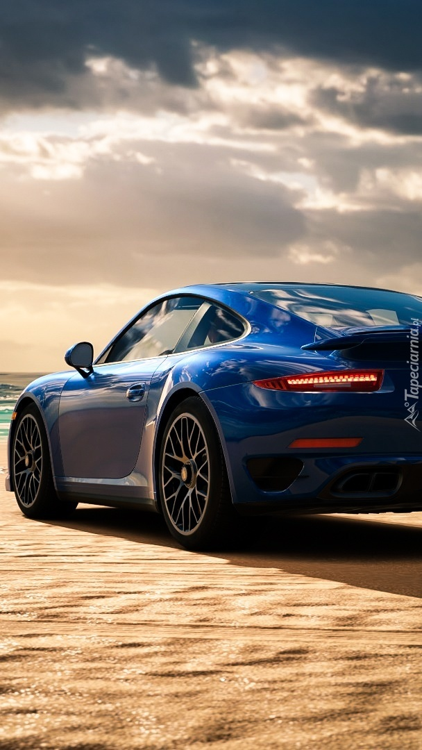 Porsche 911 Turbo S tyłem