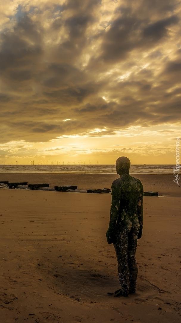 Posąg na plaży Crosby Beach