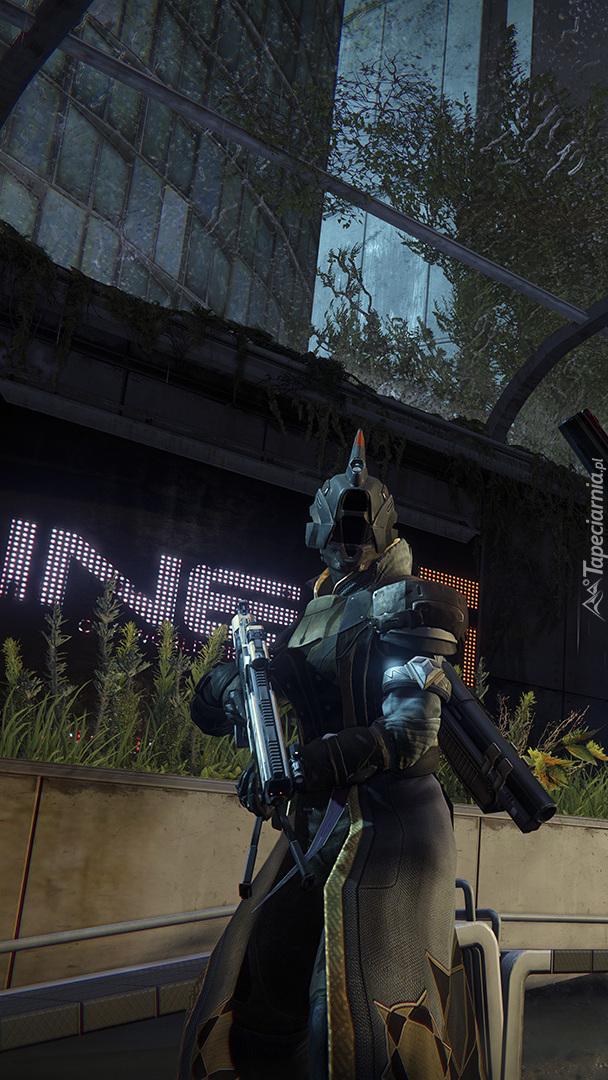 Postać z gry Destiny