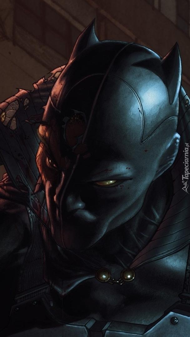Postać z komiksu Czarna Pantera