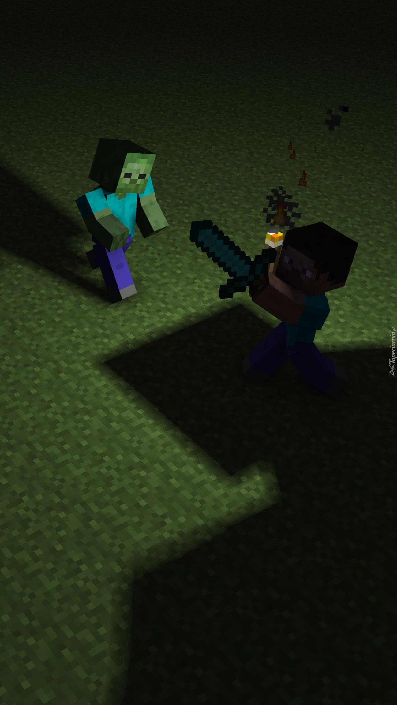 Postacie z gry  Minecraft