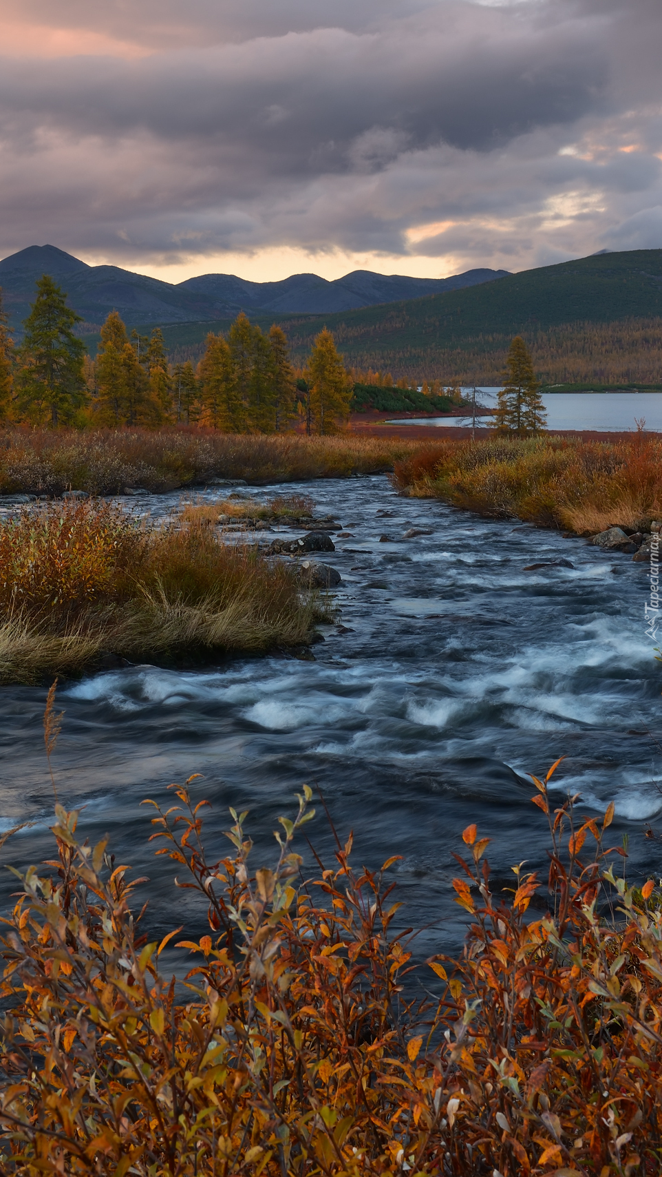 Potok Nieznany w jesiennej odsłonie