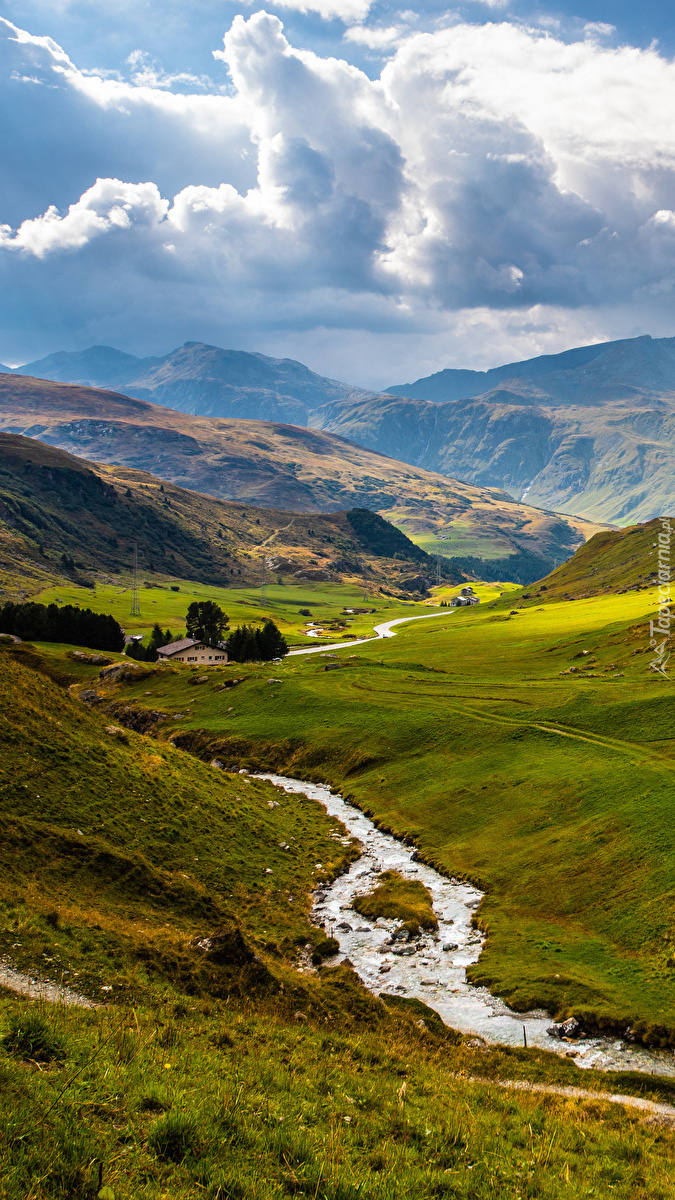 Potok w górskiej dolinie