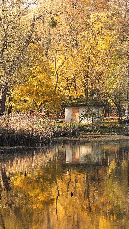 Poznański park jesienią
